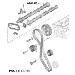 wałek rozrządu Citroen, Peugeot 2,0HDi-16v (wydech) (oryginał Peugeot)