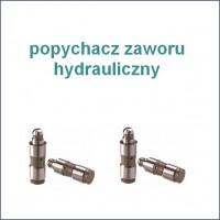 hydraulicz