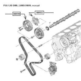 koło wałka rozrządu Citroen 1,9D DW8/2,0HDi piasta (oryginał Peugeot)