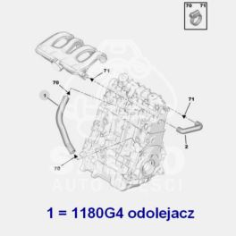 przewód olejowy Citroen, Peugeot 1,9D DW8 pokrywa/ blok (oryginał Peugeot)